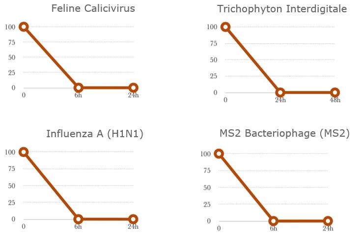 Trichophyton Feline H1N1 MS2